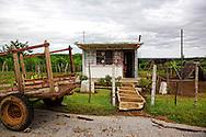 School and cart in Las Tres Palmas, Pinar del Rio, Cuba.