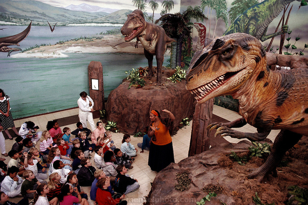 At the Science Museum in Dallas, Texas, school children listen to a docent while watching the animated robot dinosaurs Tyrannosaurus Rex and Allosaurus (made by Dinamation International). Dinamation International, a California-based company, makes a collection of robotic dinosaurs. The dinosaurs are sent out in traveling displays to museums around the world. The dinosaur's robotic metal skeleton is covered by rigid fiberglass plates, over which is laid a flexible skin of urethane foam. The plates and skin are sculpted and painted to make the dinosaurs appear as realistic as possible. The creature's joints are operated by compressed air and the movements controlled by computer.