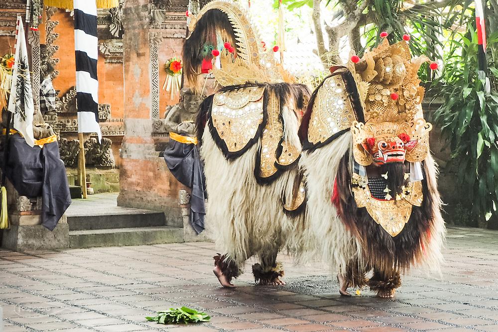 Dintorni di Ubud Bali 2015 - Maschera completa del Barong, mostro/dio che rappresenta il bene nelle rappresentazioni sacre. Il concetto di maschera nella cultura balinese è infatti legato al sacro e non semplicemente ad un personaggio teatrale.