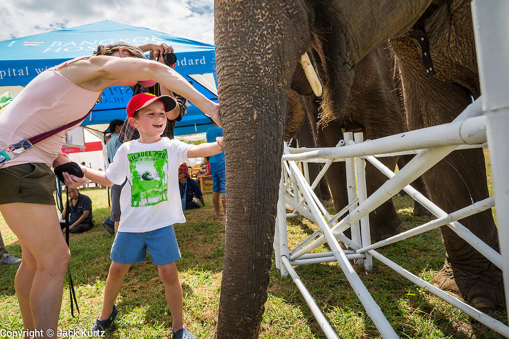 """28 AUGUST 2013 - HUA HIN, PRACHUAP KHIRI KHAN, THAILAND:  MADELINE RECHTER (left) and her son, PATRICK RECHTER, 5, pet an elephant at the King's Cup Elephant Polo Tournament in Hua Hin, Thailand. The Rechters are vacationing in Thailand from Belgium. The tournament's primary sponsor in Anantara Resorts and the tournament is hosted by Anantara Hua Hin. This is the 12th year for the King's Cup Elephant Polo Tournament. The sport of elephant polo started in Nepal in 1982. Proceeds from the King's Cup tournament goes to help rehabilitate elephants rescued from abuse. Each team has three players and three elephants. Matches take place on a pitch (field) 80 meters by 48 meters using standard polo balls. The game is divided into two 7 minute """"chukkas"""" or halves. There are 16 teams in this year's tournament, including one team of transgendered """"ladyboys.""""    PHOTO BY JACK KURTZ"""