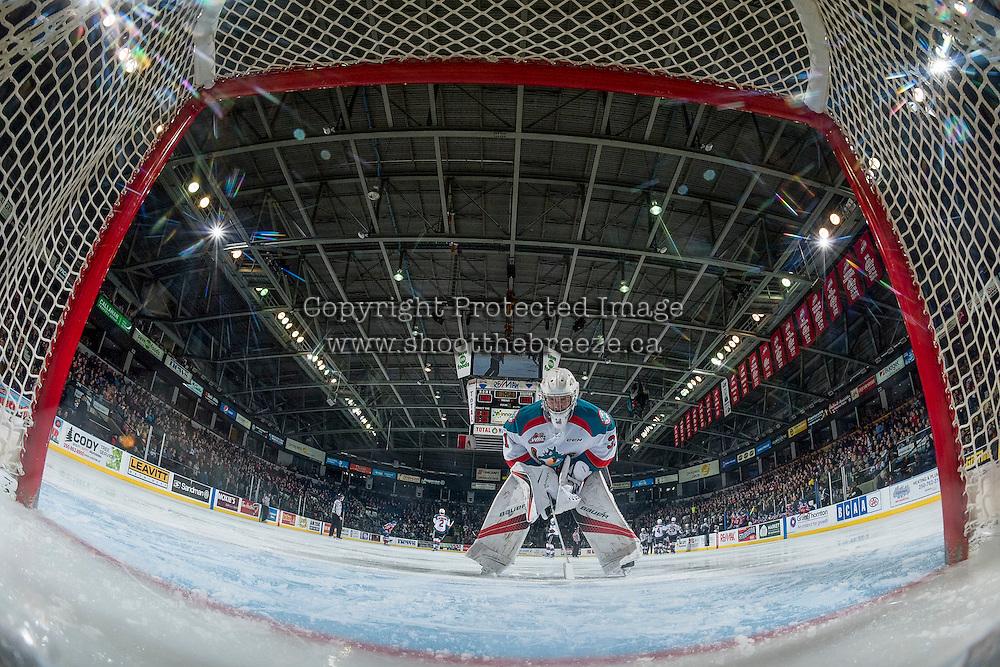 KELOWNA, CANADA - FEBRUARY 22: Brodan Salmond #31 of the Kelowna Rockets stands in net against the Edmonton Oil Kings on February 22, 2017 at Prospera Place in Kelowna, British Columbia, Canada.  (Photo by Marissa Baecker/Shoot the Breeze)  *** Local Caption ***