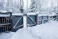 Vintermotiver fra Gol i Hallingdal..Temperatur: 23 kuldegrader