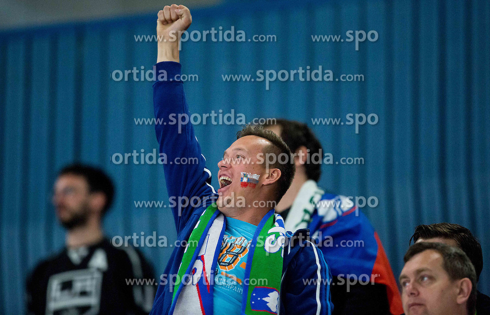 Supporters of Slovenia during Ice Hockey match between Belarus and Slovenia at Day 2 in Group B of 2015 IIHF World Championship, on May 2, 2015 in CEZ Arena, Ostrava, Czech Republic. Photo by Vid Ponikvar / Sportida