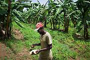 An African man walks through a field in rural Kenya.