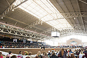 West Coast Dressage Convention - Del Mar