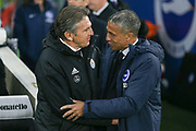 Brighton and Hove Albion manager Chris Hughton greets Leicester City first team manager Claude Puel  during the Premier League match between Brighton and Hove Albion and Leicester City at the American Express Community Stadium, Brighton and Hove, England on 24 November 2018.