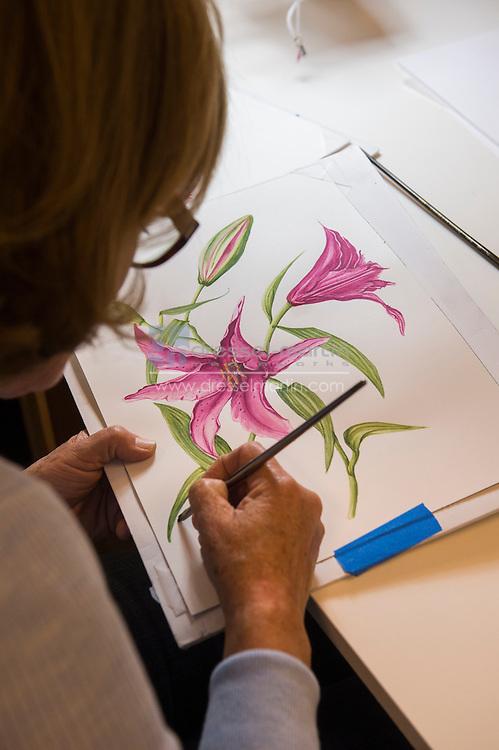 BI advanced class<br /> botanical illustration