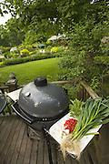 Supplies for an outdoor summer dinner.