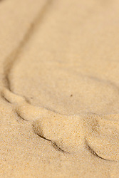 Footprint in Beach Sand