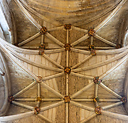 Vaulted roof celing with carved stone bosses inside Malmesbury abbey church, Wiltshire, England, UK