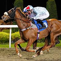 Swift Blade and R Winston winning the 7.55 race