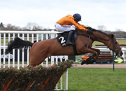 Beakstown ridden by Harry Skelton clear the last flight before winning The Ballymore Leamington NovicesÕ Hurdle Race run at Warwick Racecourse.
