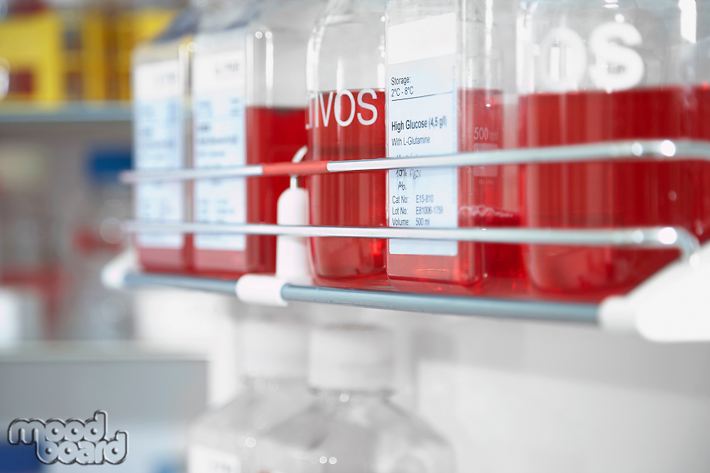 Red chemicals in laboratory