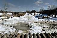 On April 26 - 2011.25 years after the Chernobyl disaster people are still suffering from the long term consequences of a nuclear meltdown. Countries affected struggle with cronic illness, contaminated food - For many their life ended with Chernobyl...<br /> children playing on the frozen ice in the Village Drozdyn (Rivne region) . the village lays in territory of Ukraine, but in it lives the majority of Belorussians. In region practically there are no workplaces. The basic source of the income at local residents - gathering of berries and mushrooms in a wood in the Belarus territory.
