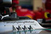 November 21-23, 2014 : Abu Dhabi Grand Prix, Keep Fighting Michael