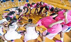 2013-14 A&T Women's Basketball vs FAMU (Think Pink)