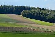 Naturpark Bergstraße-Odenwald..Odenwald Landschaft, Felder, Wald, dunkle Wolken