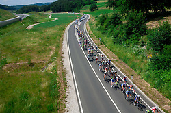 Peloton near Novo mesto during Stage 4 from Brezice to Novo mesto (155,8 km) of cycling race 20th Tour de Slovenie 2013,  on June 16, 2013 in Slovenia. (Photo By Vid Ponikvar / Sportida)