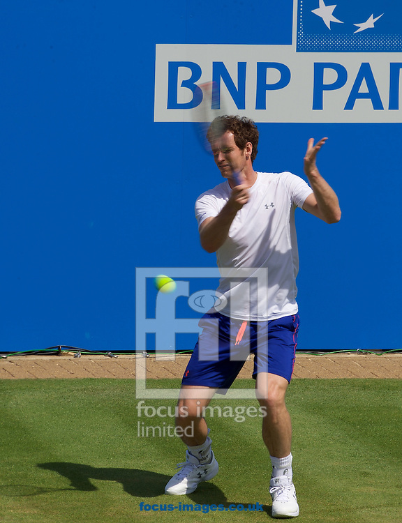 Andy Murray practicing his  forehand before his second round singles match in the Aegon Championships at the Queen's Club, West Kensington<br /> Picture by Alan Stanford/Focus Images Ltd +44 7915 056117<br /> 18/06/2015