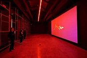 57th Art Biennale in Venice - Viva Arte Viva. Giardini.<br /> International Pavillion.<br /> Sebastián Díaz Morales: Suspension (2014-17)