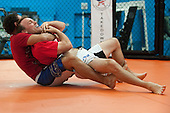 2013 04-10 Johny Hendricks Kevin Harvick MMA