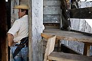 Aquidauana_MS, Brasil...Vaqueiro na Fazenda Rio Negro no Pantanal...A cowboy in the Rio Negro farm in Pantanal...Foto: JOAO MARCOS ROSA / NITRO