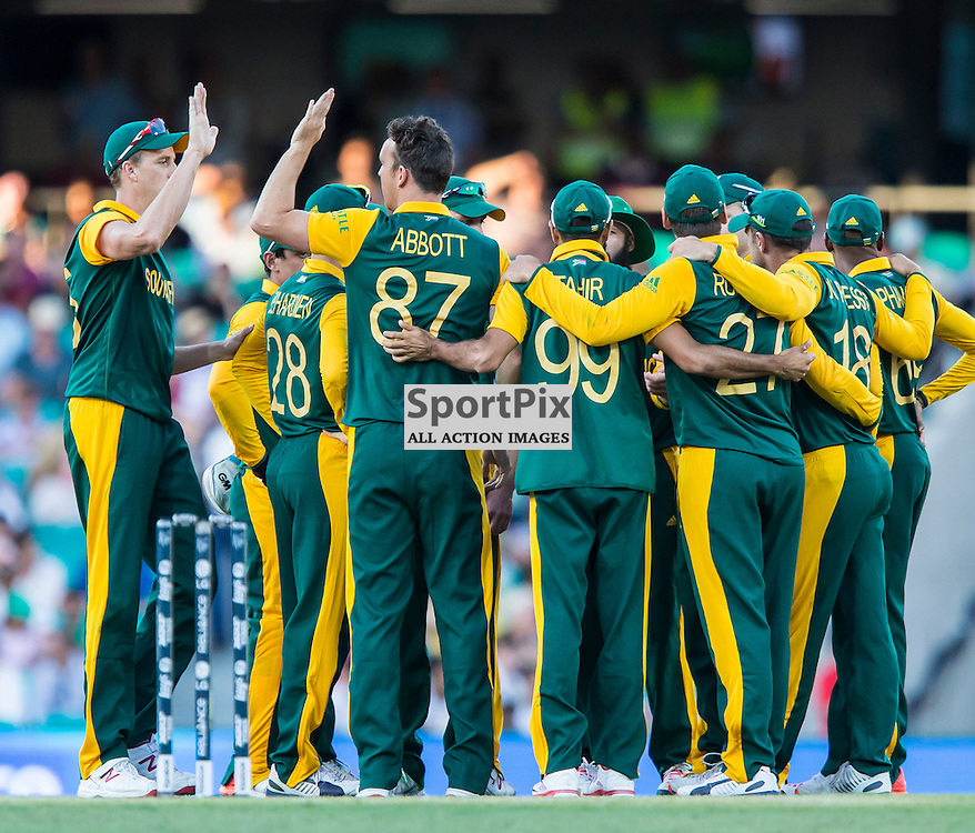 ICC Cricket World Cup 2015 Tournament Match, South Africa v West Indies, Sydney Cricket Ground; 27th February 2015<br /> The South African team after West Indies Chris Gayle's wicket