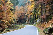 Straße, Felsen, Kirnitzschtal, Sächsische Schweiz, Elbsandsteingebirge, Sachsen, Deutschland | road, rocks, Kirnitzsch valley, Saxon Switzerland, Saxony, Germany