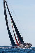 Comanche sailing in the Newport Bermuda Race.