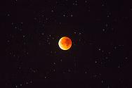 Europa, Niederlande, totale Mondfinsternis ueber Oostkapelle auf Walcheren, Blutmond, 28. September 2015.<br /> <br /> Europe, Netherlands, total lunar eclipse over Oostkapelle on the peninsula Walcheren, blood moon, 28. September 2015.
