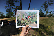 oxford storm-pine flat aniversary
