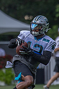 Carolina Panthers wide receiver Jarius Wright (13) catches a pass during training camp at Wofford College, Sunday, August 11, 2019, in Spartanburg, S.C. (Brian Villanueva/Image of Sport)