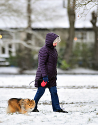 © Licensed to London News Pictures.18/03/2018<br /> Chislehurst, UK.<br /> Dog walkers out in the morning snow on Chislehurst Common, Chislehurst, Kent<br /> Photo credit: Grant Falvey/LNP