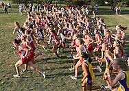 The runners take off at the start of the girls 4k run during the Cedar Rapids Invitational at Noelridge Park in Cedar Rapids on Thursday, September 6, 2012.