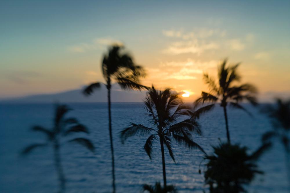 Palm trees and Lanai Island at sunset from Wailea Beach Resort, Maui, Hawaii.