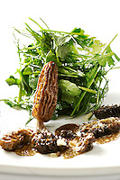 A single morel resting on parsley salad, Morel coulis on front, on a white plate