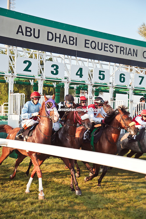 Horse racing at Abu Dhabi Equestrian Club