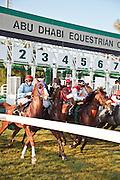 Horse racing at Abu Dhabi Equestrian Club