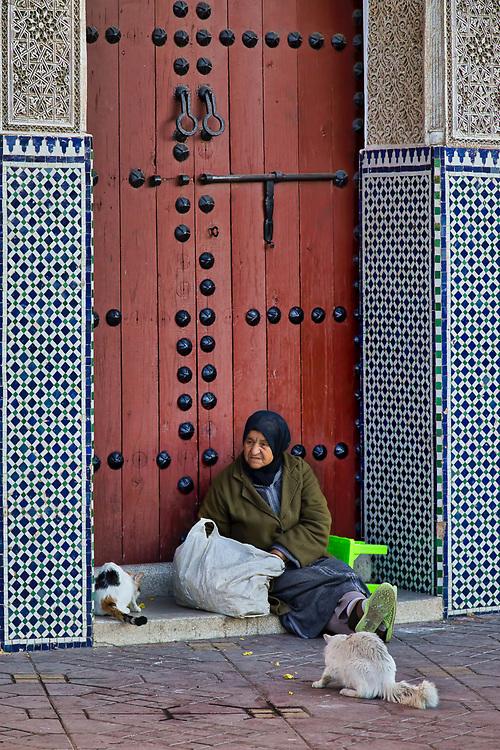 Catwoman - Djamaa El Fna, Marrakech, Morocco