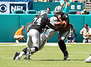 Sep 23, 2018; Miami Gardens, FL, USA; Miami Dolphins defensive end Cameron Wake (91) sacks Oakland Raiders quarterback Derek Carr (4) at Hard Rock Stadium. The Dolphins defeated the Raiders 28-20. (Steve Jacobson/Image of Sport)