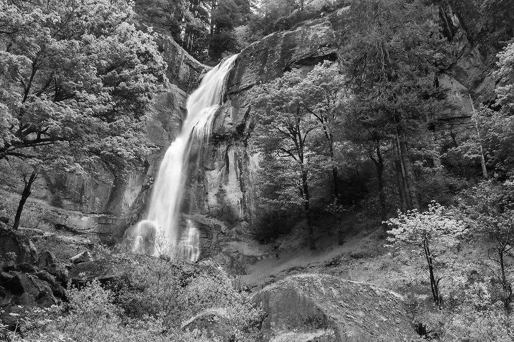 Silver Falls - Oregon - Infrared Black & White