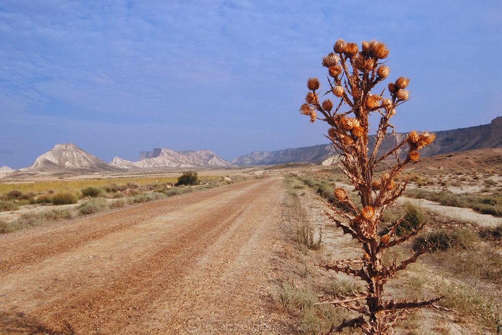 Bardenas Reales landscape in Navarra, Spain.