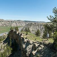 man hikes along rim rock overlooking the umrbnm, montana