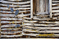 "An wooden house detail pictured in Lazarim during the traditional Celtic carnival ""Caretos"" in the village of Lazarim, central Portugal on February 17, 2015. PAULO CUNHA /4SEE"