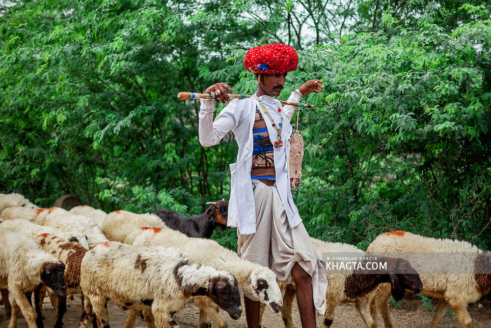 Rayka or Rabari Tribe of India