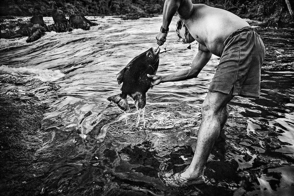 Guyane fran&ccedil;aise, Palassissi, Haut-Maroni, zone a acces reglemente.<br /> <br /> Peche. Pirai, aimara ou coumarou, le poisson reste la base alimentaire des populations amerindiennes du Haut-Maroni. Les poissons carnivores, derniers maillons de la cha&icirc;ne alimentaire, sont les vecteurs de la contamination mercurielle.<br /> <br /> Les symptomes se traduisent, a court terme, par une reduction du champ visuel, une baisse de l&rsquo;acuite auditive, des troubles de l&rsquo;equilibre et de la marche. A plus long terme, les personnes exposees souffrent d&rsquo;encephalopathie, d&rsquo;une deterioration intellectuelle, de cecite et de surdite. La population la plus exposee est celle des jeunes enfants, mais c&rsquo;est au stade foetal que l&rsquo;infection est la plus profonde car irreversible et difficilement decelable.<br /> Cette contamination se revele tres pernicieuse. On a pu mesurer, lors de precedents, l&rsquo;etalement dans le temps des consequences sanitaires du mercure. En 1932, des quantites de mercure avaient ete rejetees progressivement dans les eaux de Minamata au Japon. Ce n&rsquo;est que 23 ans apres que sont apparus les premiers cas de deces et une anormale multiplication de handicaps physiques et de malformations foetales.