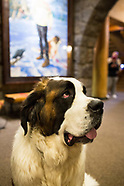 Timberline Lodge, Oregon Photos