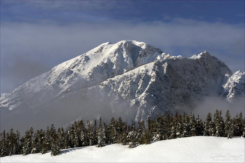 A winter view at Grand Teton National Park
