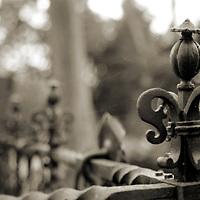 An ornate fence rail