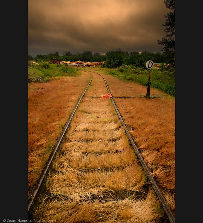 Lumber Yard Tracks in tall grass.